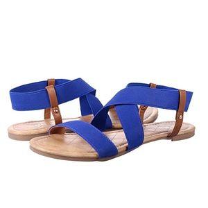 Shoes - Royal Blue & Brown Elastic Strap Sandals